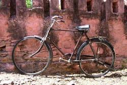 Pedalea 3. Exposición Bici 2007. Título. Bici en Udaipur. Guardabarros.org
