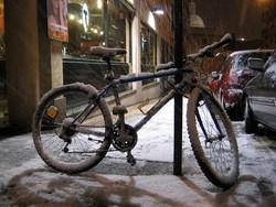 Pedalea 3. Exposición Bici 2007. Título: Febrero 2006. Guardabarros.org